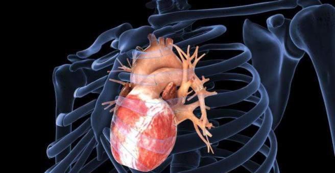 sveikatos širdies kateterizavimas kokie maisto produktai nuo hipertenzijos